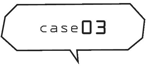 case03